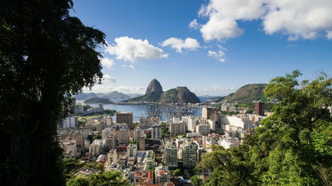 Time-lapse between trees overlooking Rio of Sugarloaf Mountain Footage