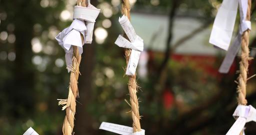 Oracles at Hakone shrine at Shizuoka close shot shallow focus Live Action