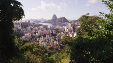 Foliage framed, ultra sharpened, tracking shot of Rio de Janeiro and mountains Footage