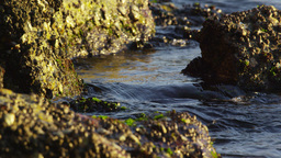 Static shot of dark water splashing over very rough boulders Footage