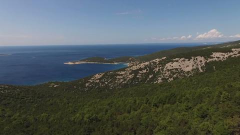 Aerial - Overgrown seaside landscape Footage