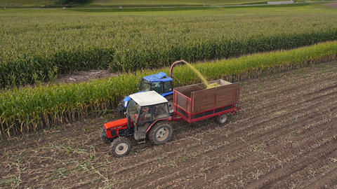 Aerial - Combine harvesting corn for silage Footage