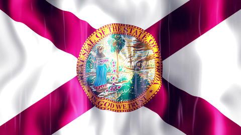 Florida State Flag Animation Animation