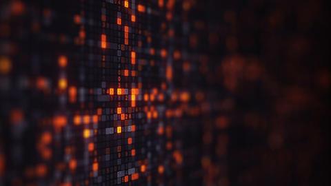 Orange random numbers on computer monitor loopable animation Animation