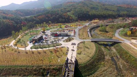 Autumn of Baekdudaegan arboretum, Bonghwa, Gyeongsangbukdo, South Korea Asia Footage