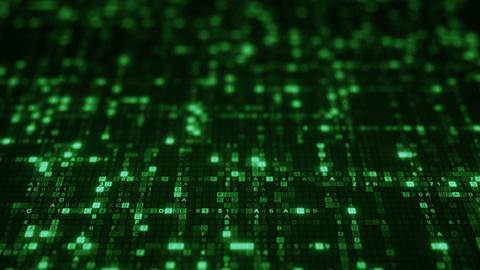 Green HEX digital symbols on computer monitor loopable animation Animation