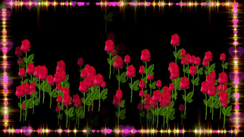 RED ROSES FOR YOU Animation
