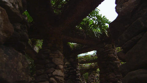 Rock Structure in Jardim Botanico, Rio Footage