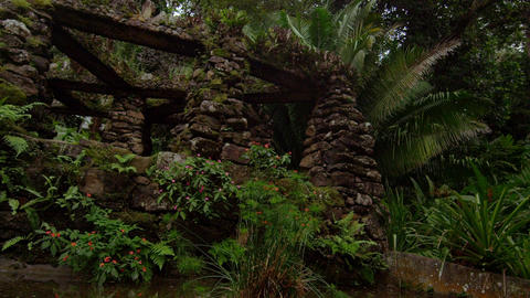 Tracking shot near a stone structure in the Jardim Botanico, Rio Footage