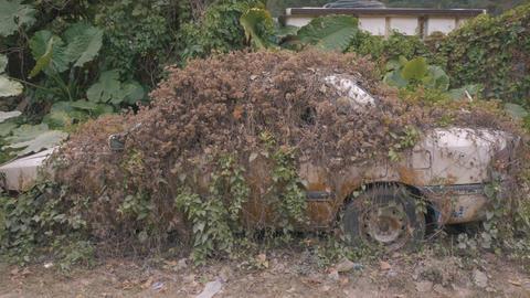Apocalyptic Abandoned Car 14 Footage