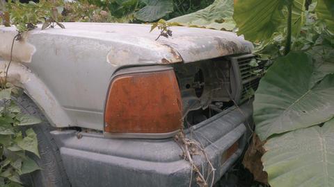 Apocalyptic Abandoned Car 13 Footage