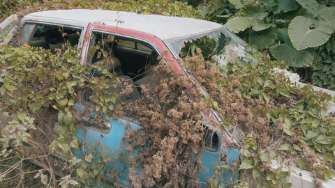 Apocalyptic Abandoned Car 08 Footage