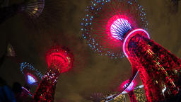 Singapore time lapse 4K, timelapse of Super Tree at Gardens by The Bay Footage