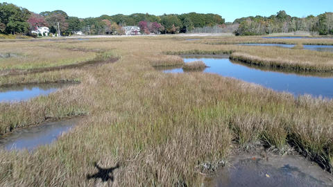 Aerial Drone - Fly Low Over Marsh Passing Over Grass And Water With Drone Shadow Live Action