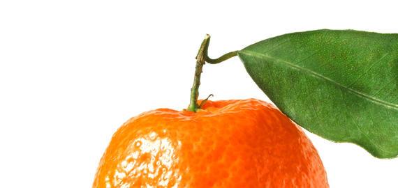 Tangerine with leaf Photo