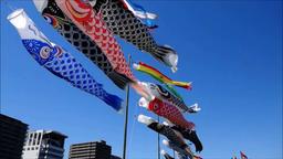 9 狩野川鯉のぼりと対岸のビル16秒フィクス横位置音なし ライブ動画