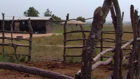Grassy huts in Africa Footage