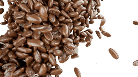 Roasted Coffee beans falling and mixing with alpha Animation