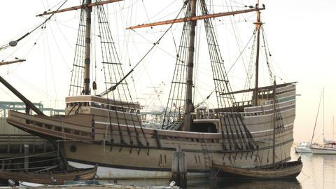 Mayflower in Massachusetts Footage