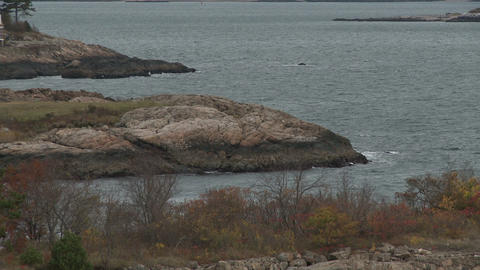 Rock Massachusetts coastline near Marblehead in Autumn Footage