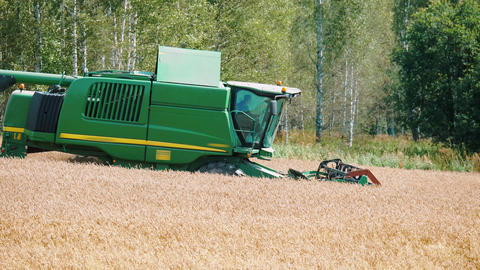 Combine harvester working on golden wheat field Footage