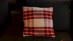 Decorative Couch Pillow Live Action