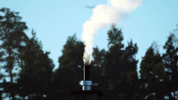 Smoking chimney near forest, real time Footage