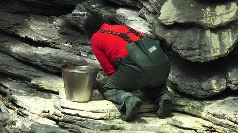 C0993 wildlife feeding career volunteer Footage
