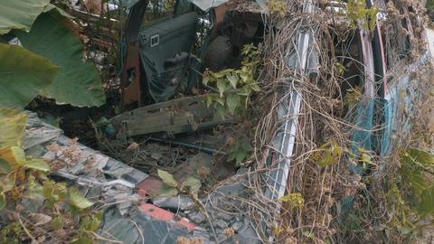Apocalyptic Abandoned Car 18 Footage
