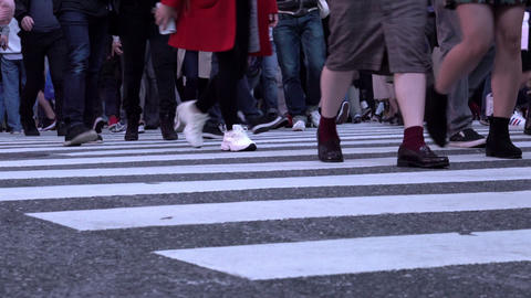 Feet of people crossing the famous Shibuya intersection at evening GIF