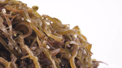 Seaweed Edible in bulk Footage