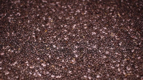 Chia seeds seed food closeup texture pattern. Seamless looping video footage Live Action