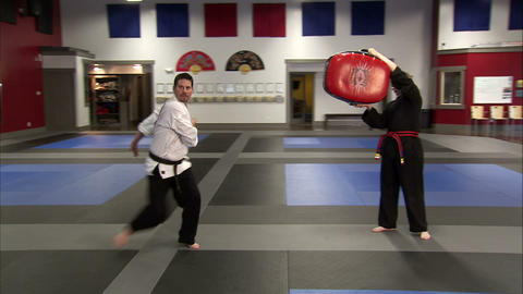 Martial arts instructor kicking a bag held in the air Live Action