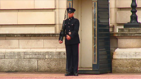 Sentry moving with firearm at Buckingham Palace Footage