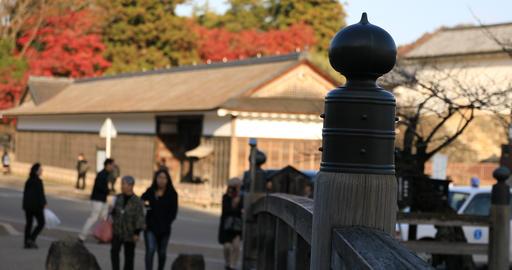 Symbol on the bridge at traditional downtown in Hikone Shiga ビデオ