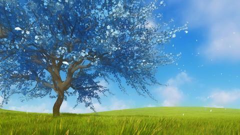 Surreal blue sakura cherry tree in full blossom 3D animation Stock Video Footage