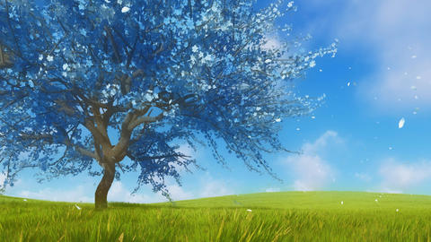 Surreal blue sakura cherry tree in full blossom 3D animation CG動画素材