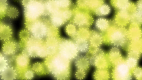 Star-flower-illuminations-yellow Animation