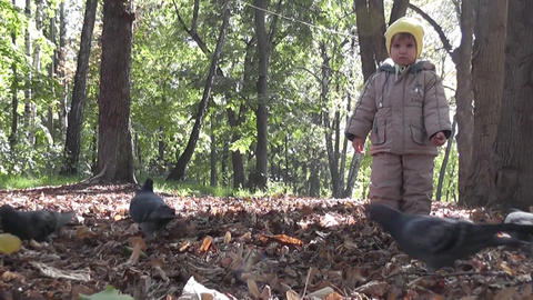 small boy and pigeons Stock Video Footage