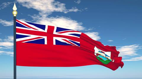 Flag Of Bermuda Stock Video Footage