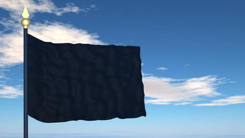 Black flag Stock Video Footage