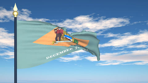 Flag of the state of Delaware USA Stock Video Footage