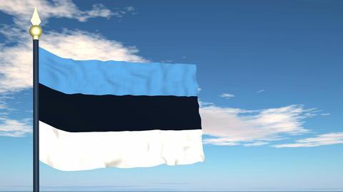 Flag Of Estonia Stock Video Footage
