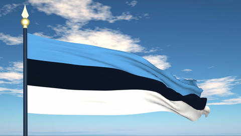Flag Of Estonia Stock Video Footage