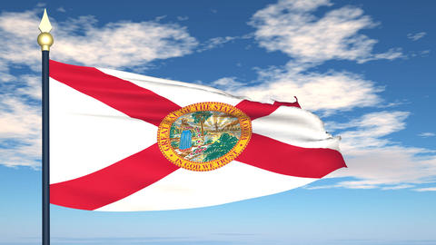 Flag of the state of Florida USA Stock Video Footage