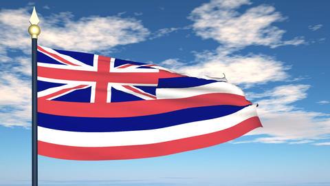 Flag Of Hawaii Animation