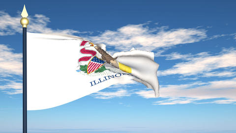 Flag of the state of Illinois USA Stock Video Footage