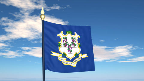 Flag of the state of Connecticut USA Stock Video Footage
