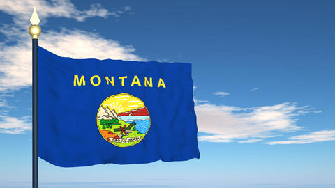 Flag of the state of Montana USA Stock Video Footage