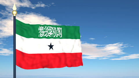 Flag Of Somaliland Stock Video Footage